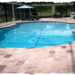 Walnut 6 x 12 Travertine